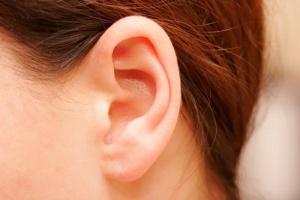 Вид уха