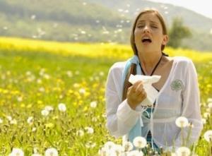 Признаки сенной лихорадки