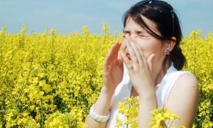 Явления аллергического происхождения