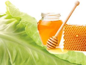 Капуста и мед для лечения храпа