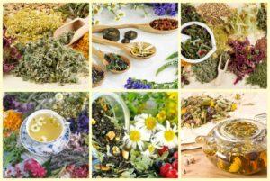 Лекарственные травяные сборы